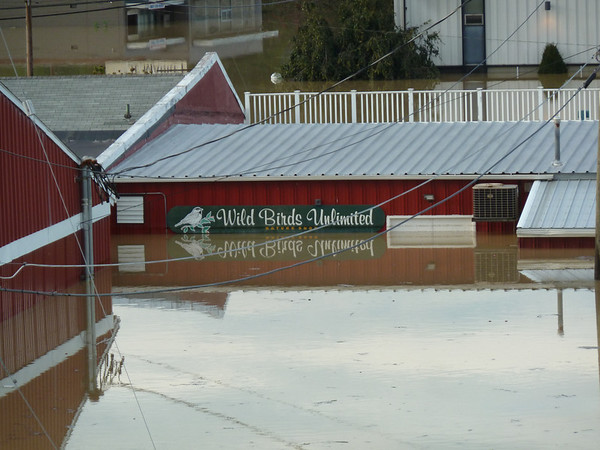 A view of Wild Birds Unlimited most people don't see, the truck dock/delivery entrance. Gives you an idea on the amount of water in the Valley Plaza area. The white rectangle is a set of double doors 36 inches wide by 80 inches tall. looks like currently 6 ft of water in the store!